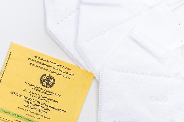 Digitaler Impfpass wird ab Juni 2020 eingeführt